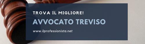 avvocato treviso avvocati